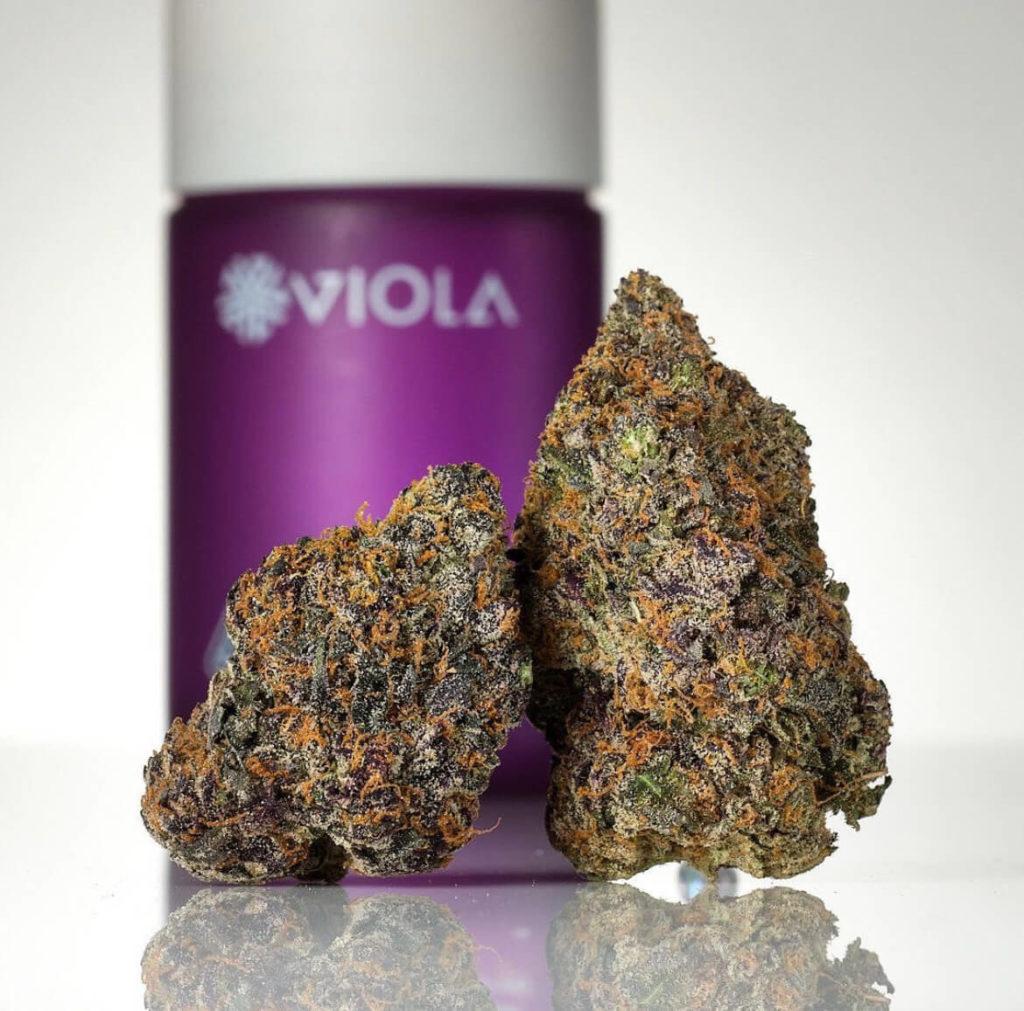 viola brand cannabis nug